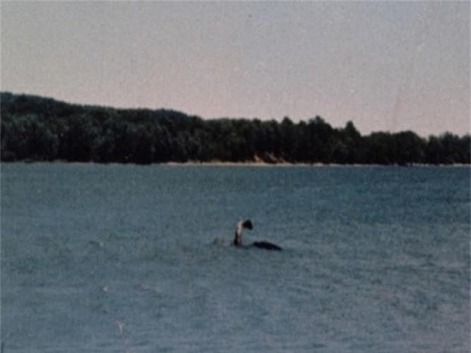 """Vi sao con nguoi """"dien cuong"""" san lung quai vat ho Loch Ness?-Hinh-7"""