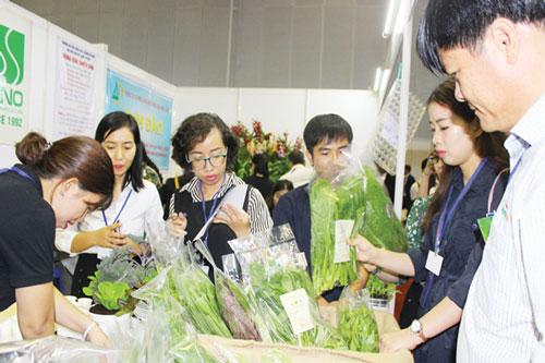 Bảo hộ nhãn hiệu sẽ giúp rau quả của HTX vươn ra xa thị trường nước ngoài