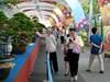 Lần đầu tiên Việt Nam tổ chức Lễ hội Bonsai và Suiseki