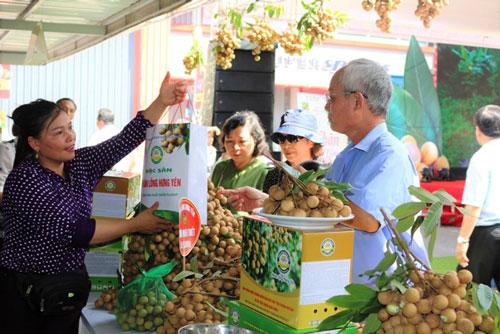 Người tiêu dùng mua đặc sản Nhãn lồng Hưng Yên ngay tại Tuần lễ.