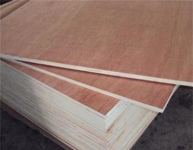 gỗ dán đội lốt xuất xứ