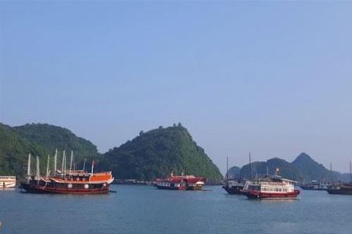 Hải Phòng: Ngư dân nuôi cá lồng trên vịnh Cát Bà khá giả