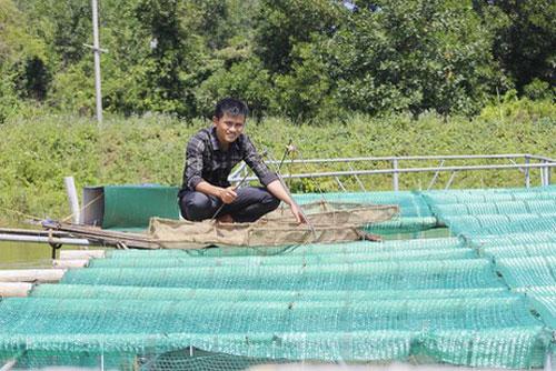 Anh Sang với ao ương cá chình giống của trang trại.