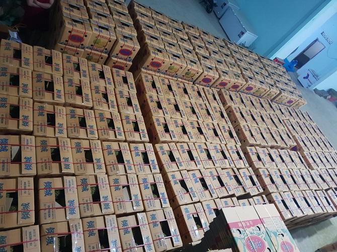 Sầu riêng được đóng thùng theo quy cách rất kỹ lưỡng để chuẩn bị xuất khẩu sang Trung Quốc (Ảnh: TL).