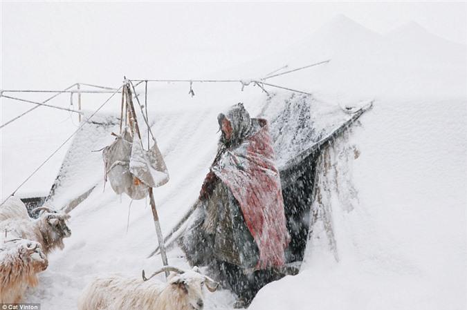 Cuoc song khong tien, khong cong nghe cua bo toc o Himalaya-Hinh-11