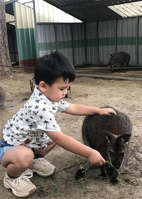 Ngam con trai dang yeu cua Ngoc Lan - Thanh Binh-Hinh-12