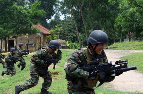 Hải quân Đánh bộ là một binh chủng thuộc Quân chủng Hải quân Việt Nam có nhiệm vụ đóng quân bảo vệ các đảo, đá hoặc tấn công, đổ bộ bằng đường biển lên đất liền hoặc lên các đảo bị nước ngoài chiếm đóng. Bảo vệ chủ quyền lãnh thổ, lãnh hải của Việt Nam. Ảnh: Trọng Đức - TTXVN