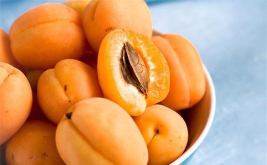 """Loại quả màu vàng nhiều người chê """"chua loét"""" hóa ra dùng để trị ho hay viêm họng, đau răng lại cực nhanh và tiện - Ảnh 3."""