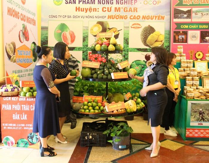 Hội chợ Nông nghiệp và sản phẩm OCOP khu vực Tây Nguyên nhằm tôn vinh các thành tựu nông nghiệp của các địa phương (Ảnh: TL)