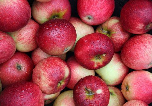 Táo là một trong những loại trái cây nên ăn khi bị ung thư tuyến giáp để tăng sức đề kháng cho cơ thể. Ảnh: abelandcole.