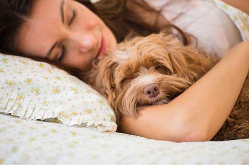 Giúp bạn ngủ ngon hơn: Ăn tối muộn hoặc ăn vặt vào đêm khuya có thể gây khó tiêu, khiến bạn khó ngủ sâu. Hãy cố gắng ăn tối sớm và tránh ăn vặt trong vòng 2 giờ trước khi đi ngủ.