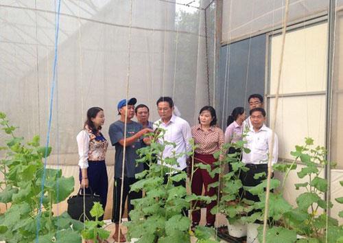 Mô hình sản xuất rau sạch ở xã Xuân Định, huyện Xuân Lộc.