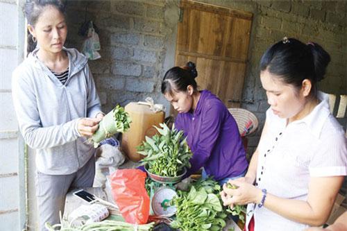 Phụ nữ giữ vai trò là lao động chính trong khu vực KTHT, HTX