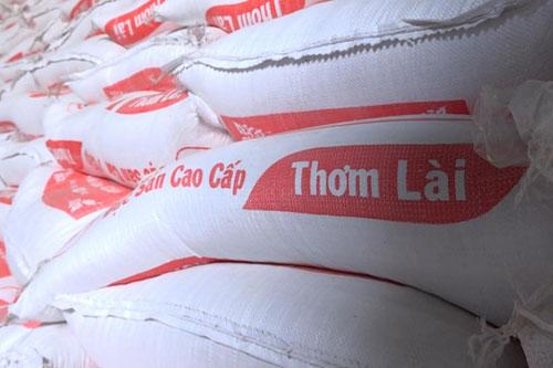 Giá lúa gạo Đồng bằng Sông Cửu Long tăng nhẹ