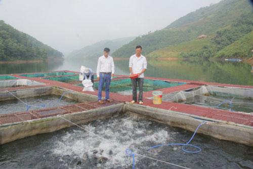 Lòng hồ thuỷ điện sông Chừng giúp bà con xoá đói giảm nghèo và kinh tế địa phương phát triển (Ảnh: Internet)