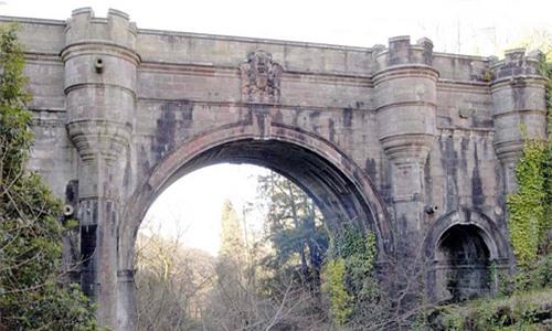 Cây cầu kỳ bí, hầu hết những chú chó đi ngang qua đều lao xuống tự sát - Ảnh 2.