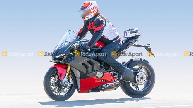 Ducati V4 Superleggera.
