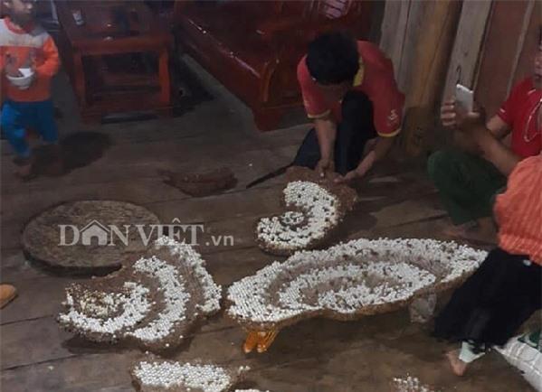 'tay san dac san' nhong ong rung cu khoi: nghe nguy hiem hai ra tien hinh anh 5