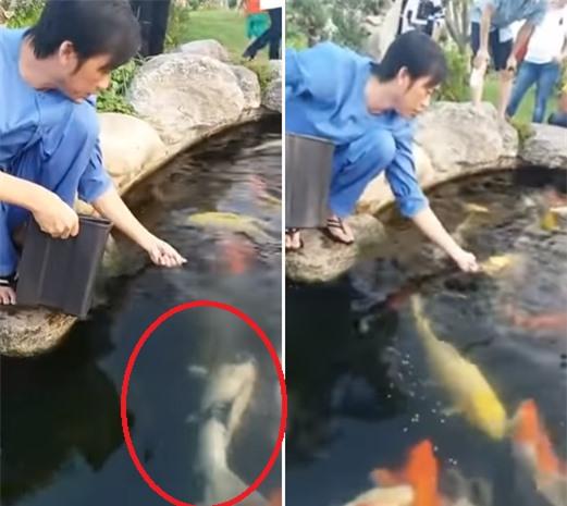 Vi sao Hoai Linh dat ten ca la Tran Thanh, Truong Giang, Chi Tai?-Hinh-4