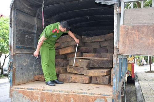 Lực lượng chức năng đang kiểm tra số gỗ lậu trên xe ô tô.