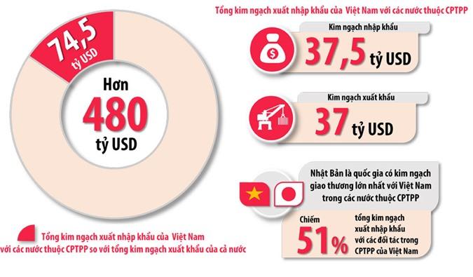 Đồ họa thể hiện tổng kim ngạch xuất khẩu, kim ngạch nhập khẩu và tổng kim ngạch xuất nhập khẩu của Việt Nam với các nước thuộc CPTPP so với tổng kim ngạch xuất khẩu của cả nước (tính trong năm 2018). (Thông tin: Văn Gia - Đồ họa: Hải Quân)
