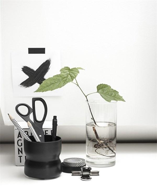 Những vật phẩm cấm kỵ bày trên bàn làm việc