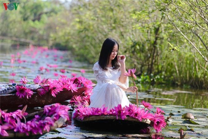 hoa sung chua huong van dep nao long trong gia lanh mua dong hinh 8