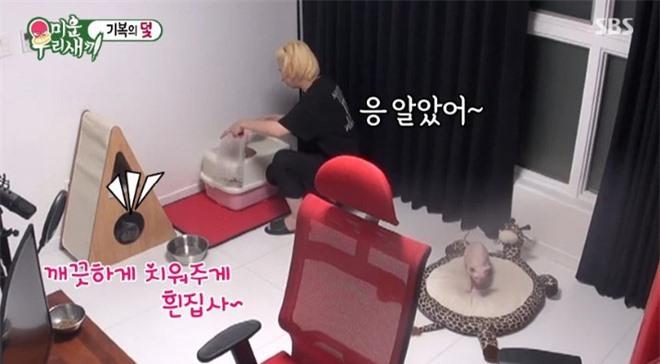 Heechul xác nhận nuôi thú cưng của Sulli, tiết lộ từng khóc không dứt vì tình trạng của chú mèo đắt nhất nhì hành tinh - Ảnh 4.