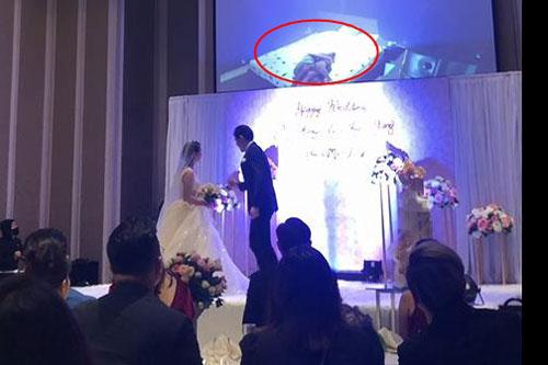 Cảnh nóng của cô dâu và anh rể bạn trai được công khai trong ngày cưới.