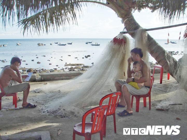 """Những tấm lưới 3 lớp vô tình trở thành """"kẻ thù"""" của rùa biển ở Cù Lao Chàm."""