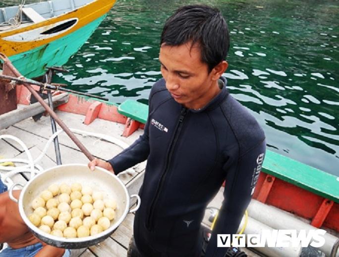 Năm 2017, một chú rùa mẹ đẻ tổng cộng 32 trứng rùa ngay dưới mực nước sâu khoảng 10m ở Hòn Dài.