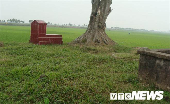 Sửng sốt với nghĩa địa mộ thân cây gỗ lim nguyên vẹn từ 3.000 năm trước ở Hưng Yên - Ảnh 4.