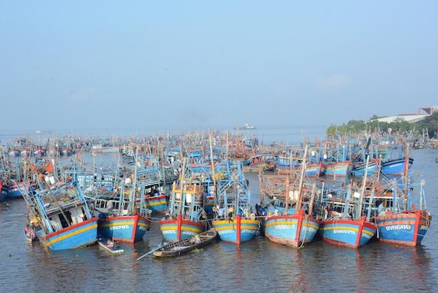 Kinh tế biển luôn chiếm vai trò quan trọng trong sự phát triển của tỉnh Kiên Giang.