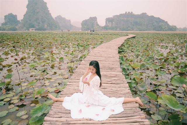 Ngỡ ngàng mùa sen giữa trời đông, lau đẹp như tranh ở Ninh Bình - Ảnh 1.