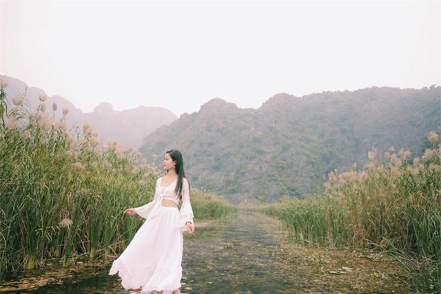 Ngỡ ngàng mùa sen giữa trời đông, lau đẹp như tranh ở Ninh Bình - Ảnh 3.