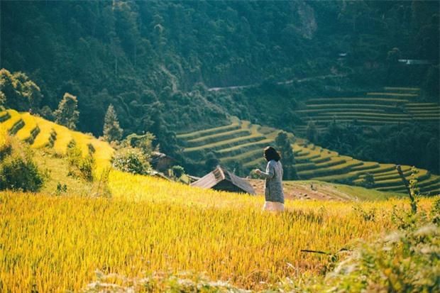 HOT: Ruộng bậc thang Mù Cang Chải vừa được công nhận Di tích Quốc gia đặc biệt, dự sẽ ngày càng hot trên bản đồ du lịch Việt - Ảnh 15.