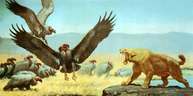 Loài người thật may mắn vì những loài chim ăn thịt khổng lồ này đã tuyệt chủng - Ảnh 5.