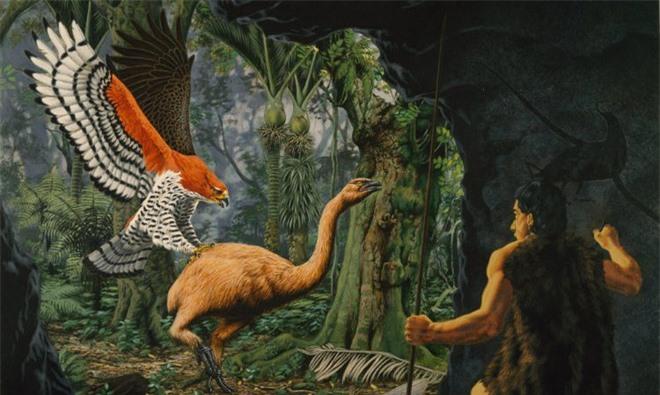 Loài người thật may mắn vì những loài chim ăn thịt khổng lồ này đã tuyệt chủng - Ảnh 6.
