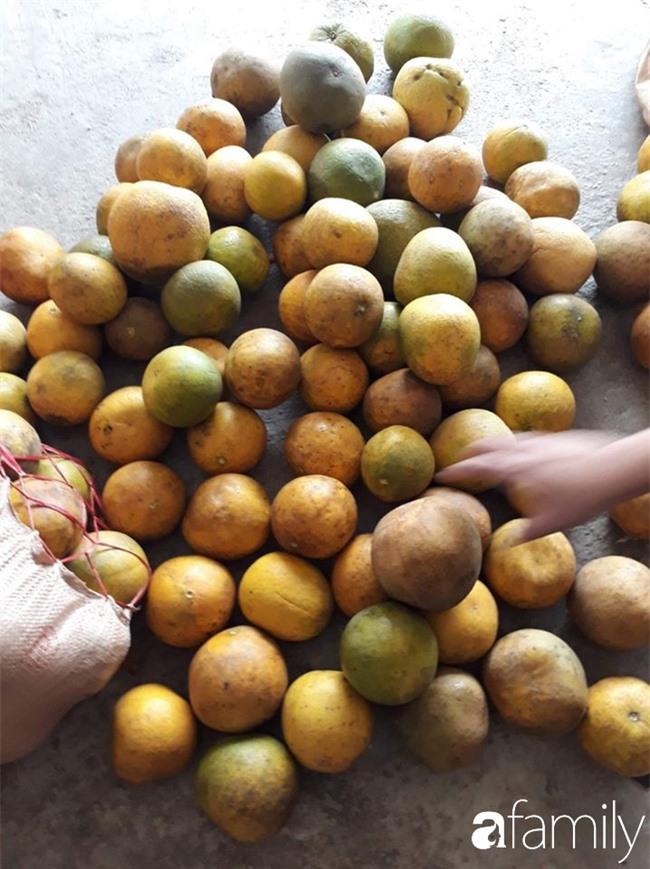 Cùng nghe người bán bưởi Diễn nhiều năm kinh nghiệm mách 6 mẹo nhỏ giúp chọn bưởi ăn Tết 10 quả thơm ngọt như 10 - Ảnh 6.