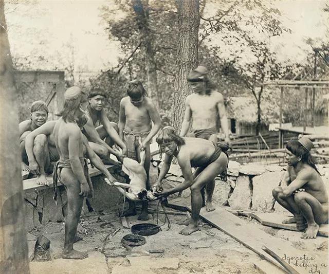 """""""Sở thú con người"""": Địa ngục trần gian của thổ dân nguyên thủy hay nơi giáo dục quần chúng của những người da trắng văn minh bậc số 1 - Ảnh 6."""