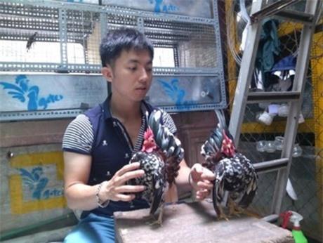 Trần Linh Huế