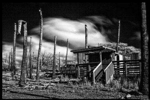 Bí ẩn làng chài ma ám ở Hawaii