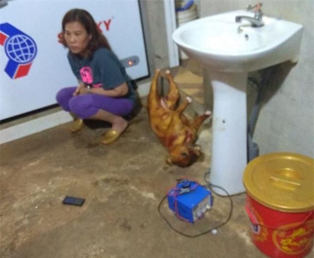 """Nữ chủ quán cấu kết với """"cẩu tặc"""" tiêu thụ hơn 14 tấn thịt chó - 1"""