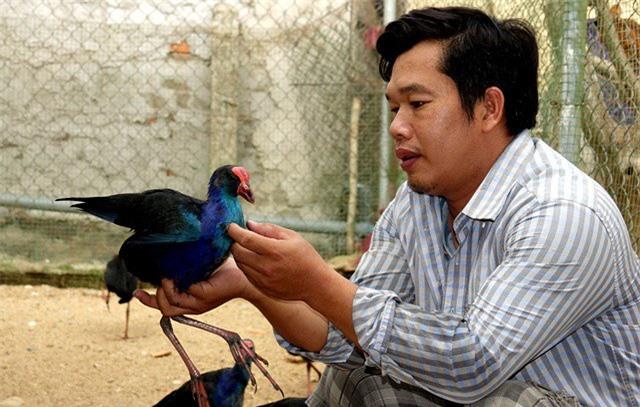 Sau nhiều năm tích lũy kinh nghiệm, anh Bốn đã ấp nở thành công các loài chim quý đang nuôi