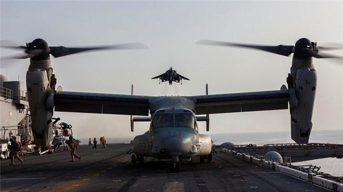 Cuong kich ha canh thang dung AV-8B Harrier My dieu den sat Iran manh co nao?-Hinh-8