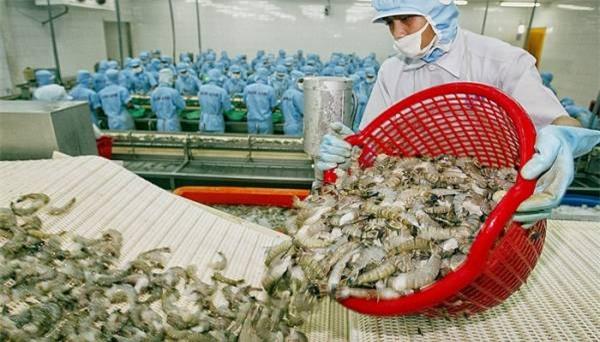 Hiệp định Đối tác toàn diện và tiến bộ xuyên Thái Bình Dương (CPTPP) mở ra cơ hội với xuất khẩu tôm ở nhiều thị trường.