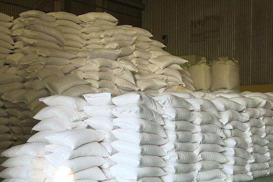 Cơ hội xuất khẩu gạo vào thị trường Hàn Quốc