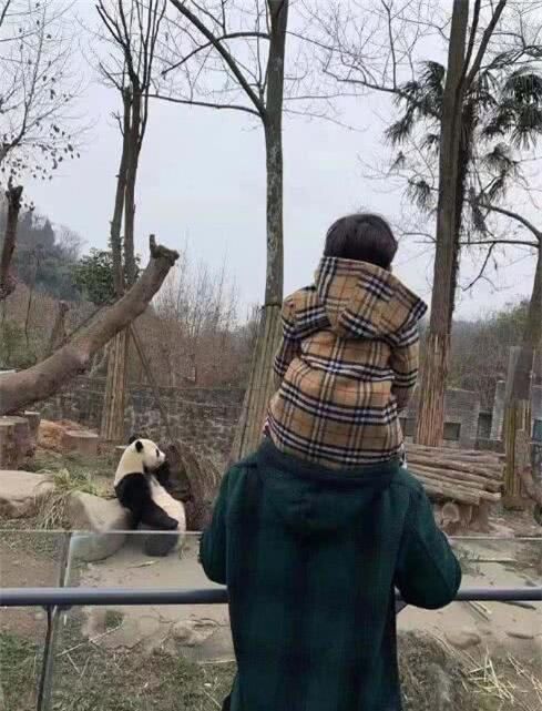 Mừng sinh nhật quý tử 3 tuổi, Angela Baby - Huỳnh Hiểu Minh không đả động đến nhau, thân ai người nấy chúc mừng  - Ảnh 2.