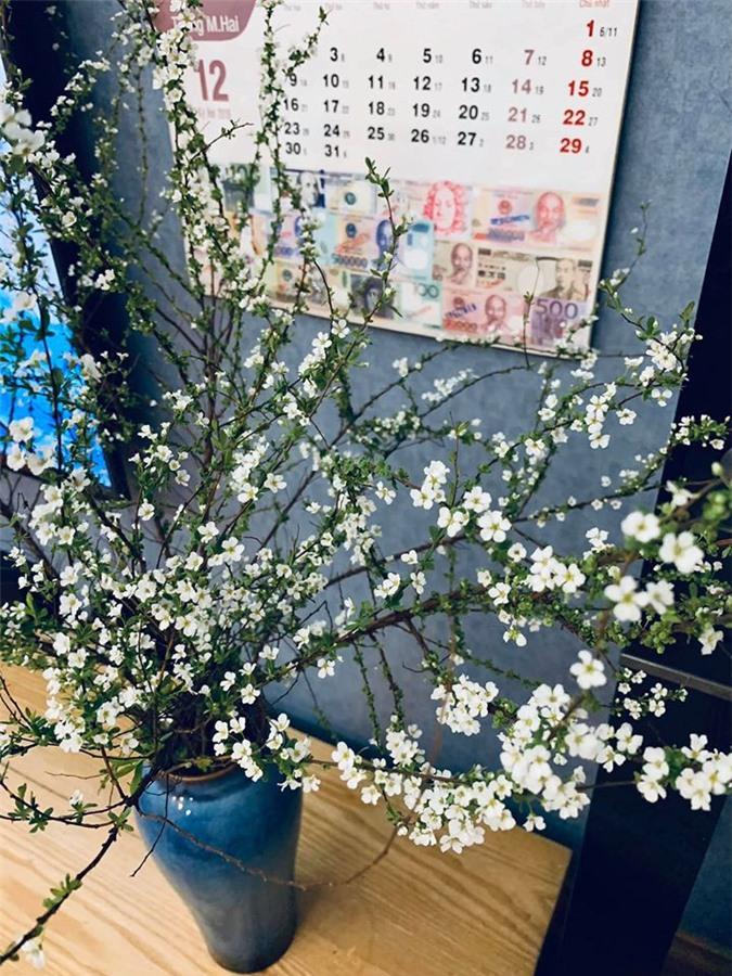 Nhung loai hoa nhap khau gay sot, chi em dua nhau mua choi Tet-Hinh-3