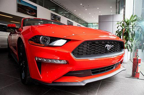 Ford Mustang Convertible 2020 mới là mẫu xe thể thao khá phổ biến ở Việt Nam thời gian gần đây, song những chiếc xe lăn bánh tại nước ta chủ yếu là phiên bản mui cứng Coupe. Do đó, những chiếc Ford Mustang Convertible (mui trần) trở nên độc đáo mỗi khi xuất hiện và số lượng cũng không nhiều do không phải hàng chính hãng.